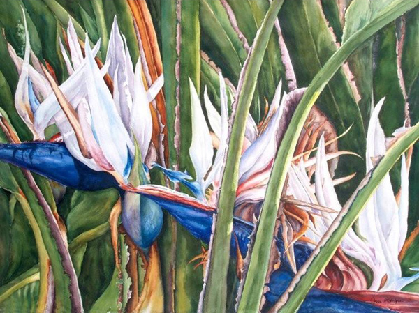 White birds in paradise watercolors by julie mcintyre white birds in paradise mightylinksfo